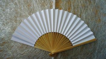 Paper Fan: White Paper