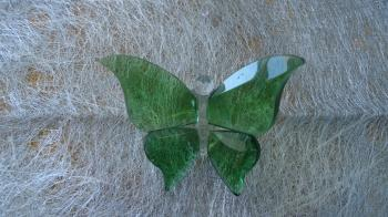 Glass Butterfly: Sml