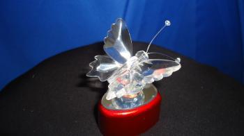 Glass Butterfly: Lrg