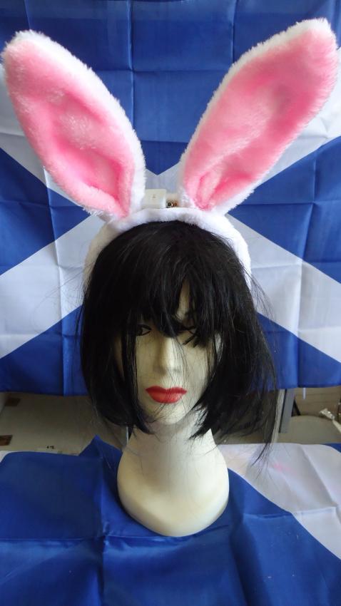 Bunny Ears: Plain